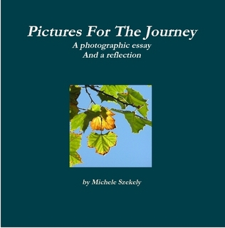 Pictures For The Journey by Michele Szekely