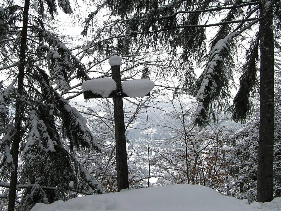 A Cross in The Forest after A Snow Storm - photo by Michele Szekely